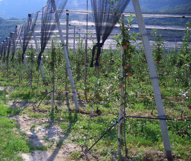 Alto adige sudtirolo italia trento trentino bolzano for Materiale irrigazione
